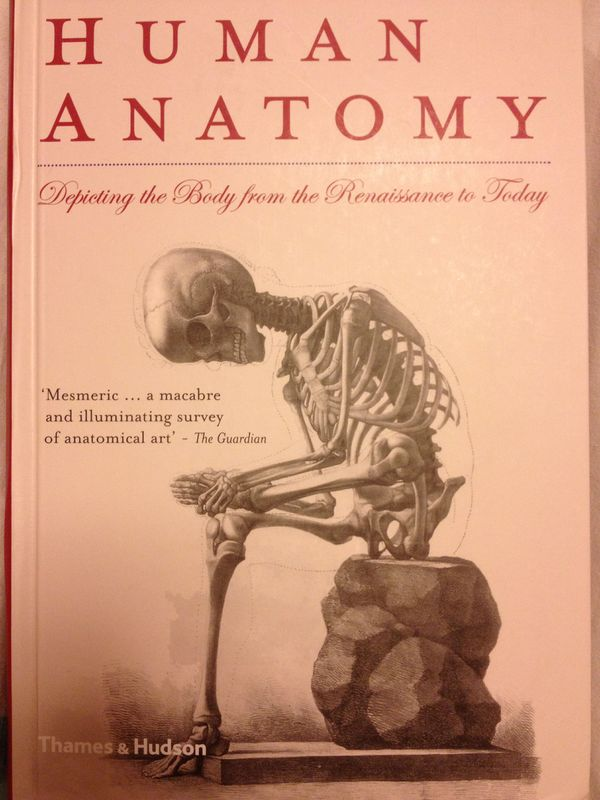 Human Anatomy in Art